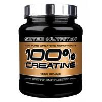 Creatine 100% (1000г)